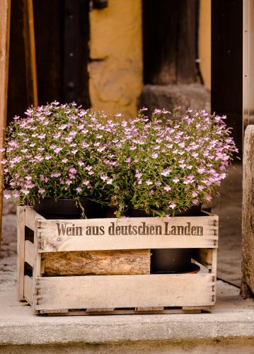 Blumen_Weinkiste